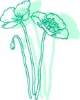 花イラスト